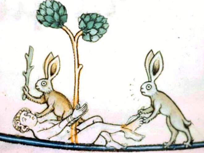 Rabbits were really violent in medieval times.