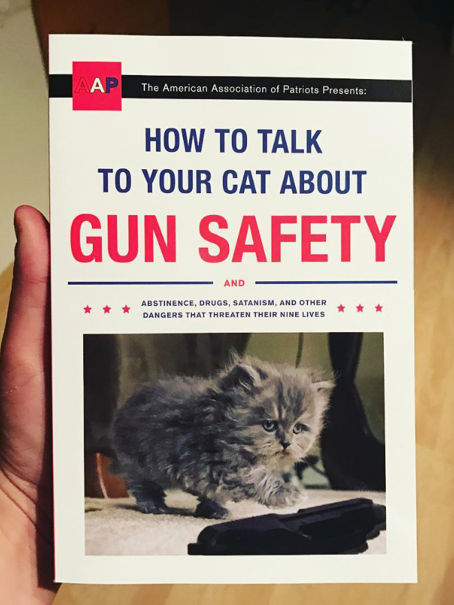 """How To Talk To Your Cat About Gun Safety"" by Zachary Auburn"