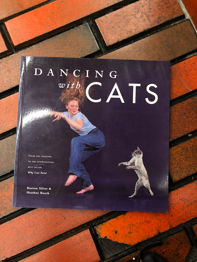 """Dancing With Cats"" by Heather Busch"