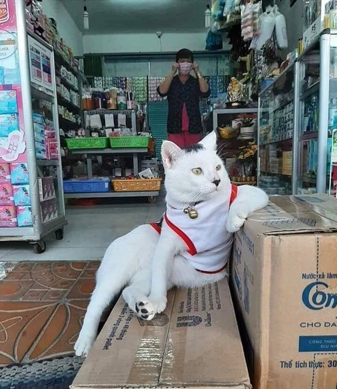 The real store owner.