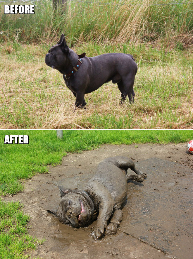 Before and after mud play.