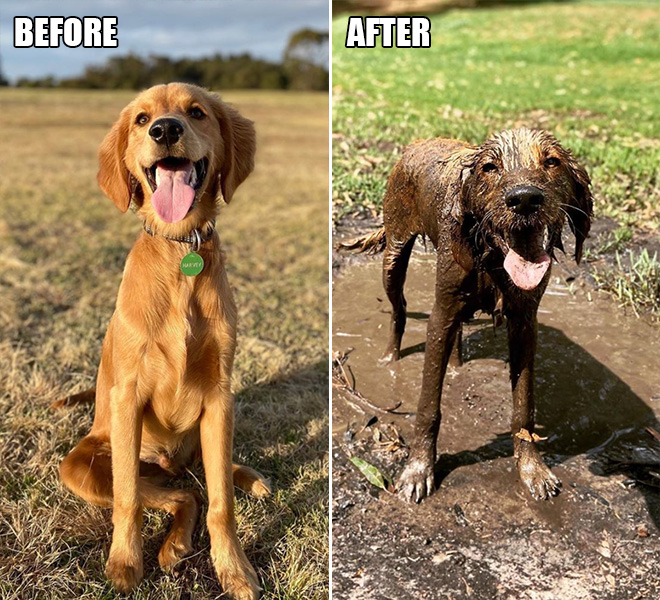 Before and after mud.