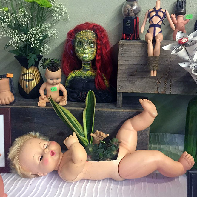 Doll head planters is the creepiest thing ever.