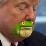 You'll Never Be Able To Unsee This Frog On Trump's Chin