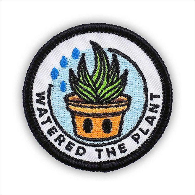 Watered the plant.