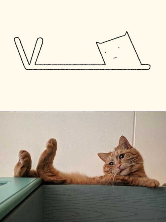 Really accurate cat drawing.