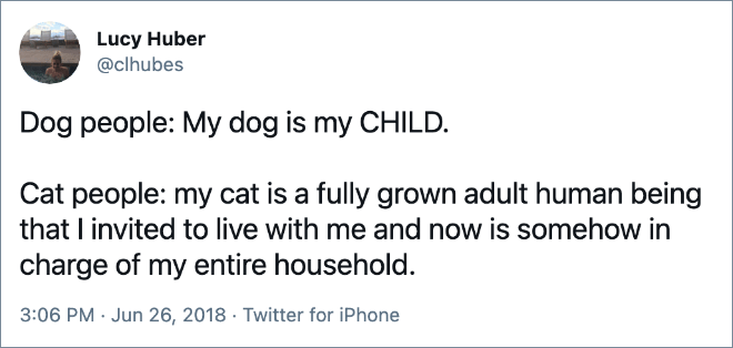Dog people: My dog is my CHILD. Cat people: my cat is a fully grown adult human being that I invited to live with me and now is somehow in charge of my entire household.