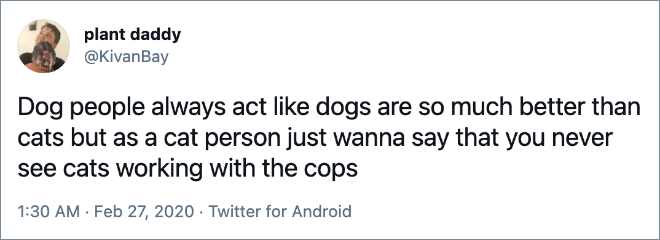 Dog people always act like dogs are so much better than cats but as a cat person just wanna say that you never see cats working with the cops