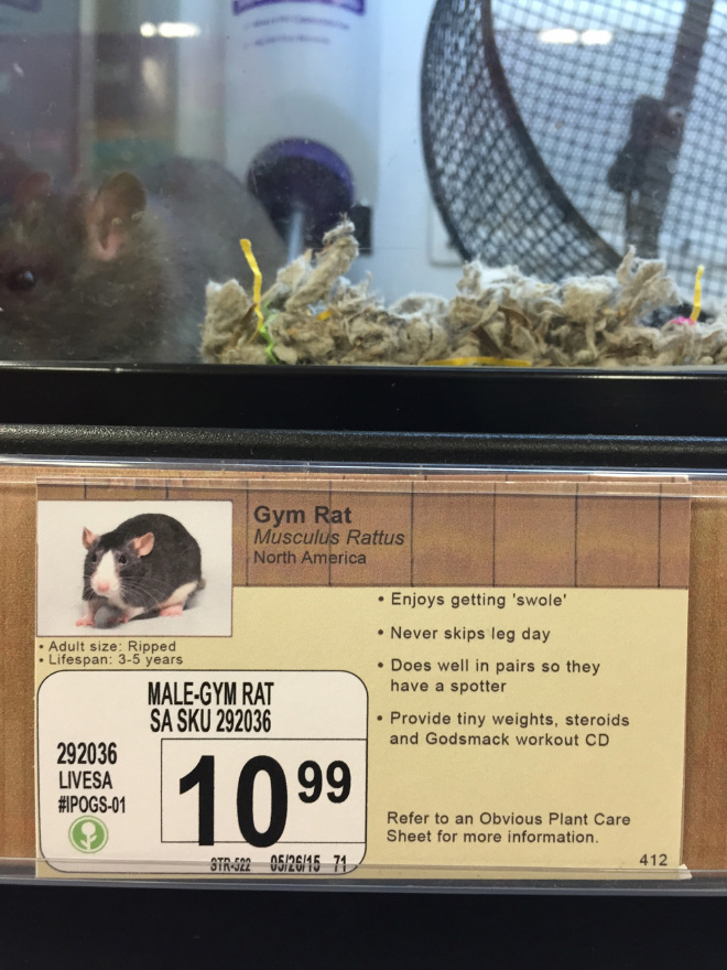 Fake labelling as a pet store prank.