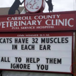 This Vet Clinic Has The Funniest Outdoor Signs