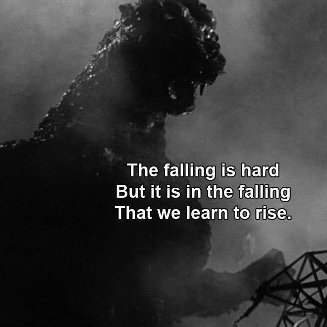 The falling is hard But it is in the falling That we learn to rise.