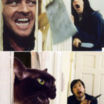 People Recreate Famous Movie Scenes With Stuff They Can Find at Home, Here Are The Results