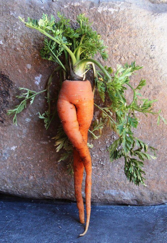 Sexy carrot.