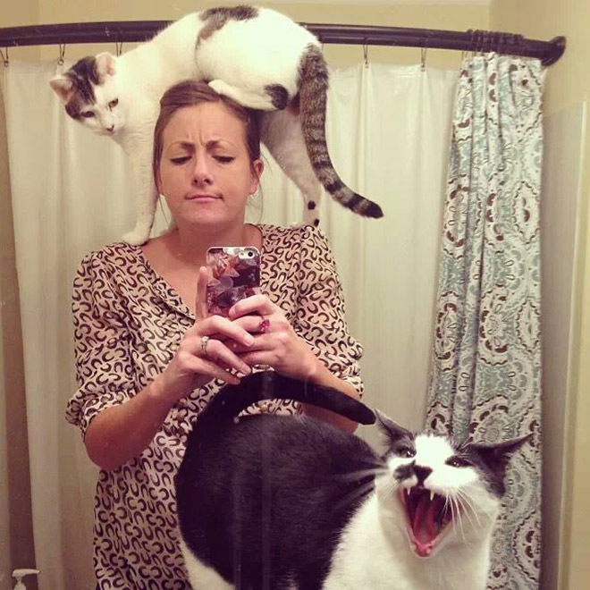 Silly humans with their stupid selfie culture... So tired of their crap...