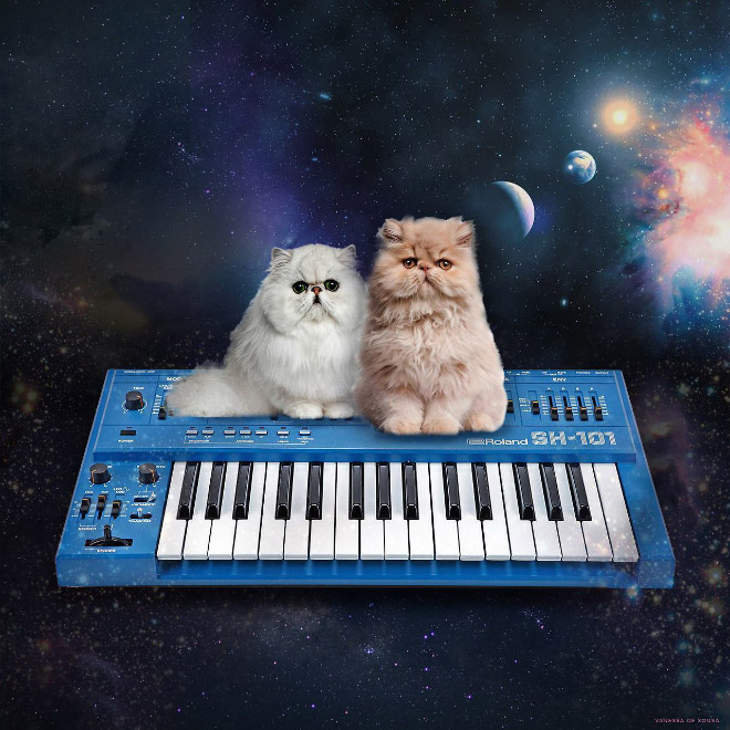 Cat on a synthesizer in space.