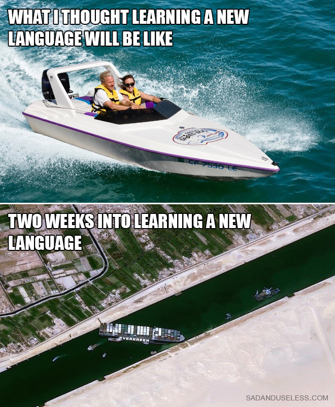 Learning a new language.