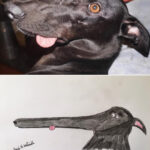 Artist Raises Thousands For Charity With His Hilariously Terrible Pet Portraits