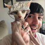 Did You Know That There's a #TinFoilCat Movement That Protects Cats From Mind Control?