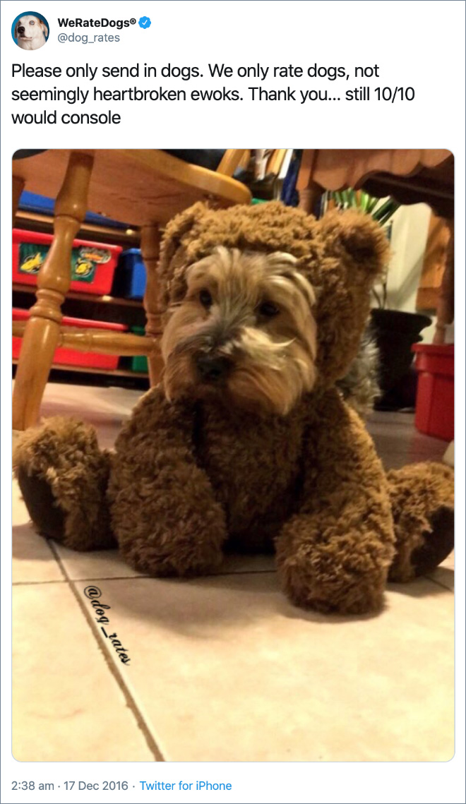 Please only send in dogs. We only rate dogs, not seemingly heartbroken ewoks. Thank you... still 10/10 would console