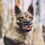 Muzzle That Will Turn Your Dog Into a Werewolf This Halloween